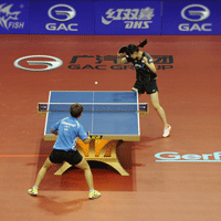 Taraflex® Table Tennis